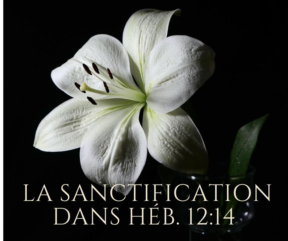 La Sanctification dans Héb 12.14
